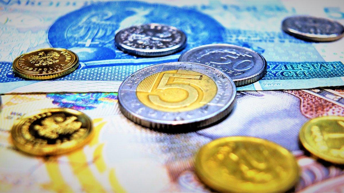 na zdjęciu monety